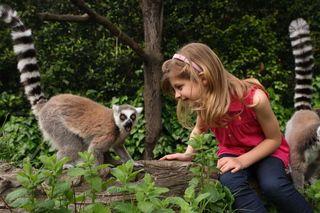 Ecoturismo Toscana: Il giardino incantato di Pistoia