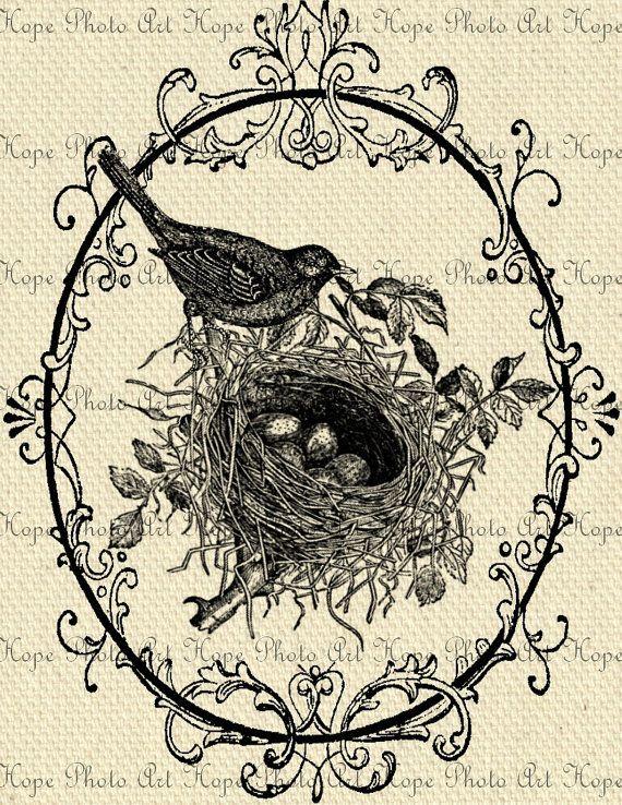 Картинки для декупажа птички монохром