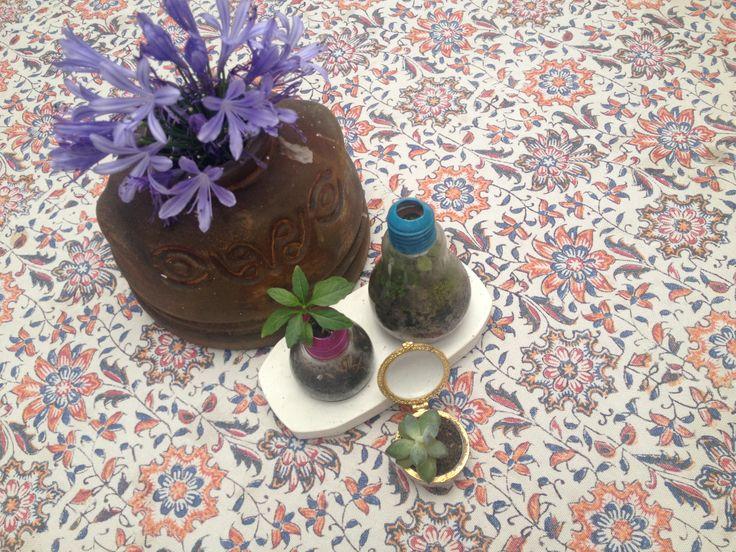 Bokok, me encantan las flores