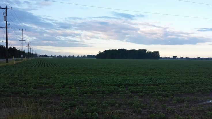 Lambton County