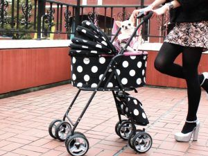 Personalized Pet Strollers For Dogs And Cats