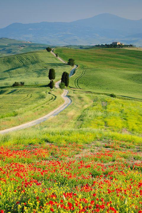 Toscane - Pienza, Italy
