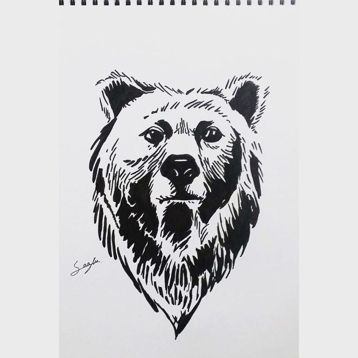Although thick, markers can still portray shape and texture similarly to things far away. Such as how the fur blends together and reflects light/shadow.