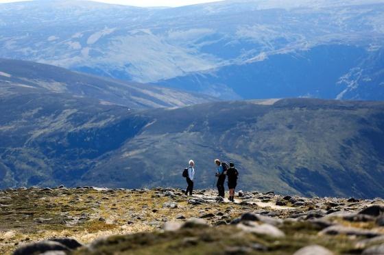 Skotlannissa on kahdenlaisia patikoijia. Toiset kävelevät huvikseen avarissa maisemissa, toiset ovat kiihkeitä munroisteja, jotka valloittavat urakalla munroja eli Ylämaan korkeimpia huippuja. Molempia marssi aurinkoisena syyskuisena lauantaina kohti Mount Keenin lakea. Katso upea kuvakooste vaellukselta. Kuva: Sirpa Räihä / HS