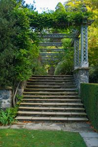 stairs - The very thing that we all walk along to get Success. Up the Ladder - My Question is: what do you do once you have a prospect on your website landing page ? http://mywealthyweb.com/website-landing-pages-that-either-rock-or-flop/  Treat them well.