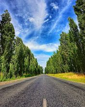 lea_bic on.lea_bicHDR + Road = my new favourite type of shot!!😁😁💙 . . . . .  #holbrook #roadshot #seeaustralia #pocket_trees #explore_landscapes #pocket_hdr #pocket_sky #tv_allskies #aussiephotos #country_features  #explore_countryside #aussiehub #hdrlover #nature_skyshotz #tv_clouds #rebels_hdr #hdr_oftheworld #poaphotography #love_all_sky #world_sunsetnsky #ipulledoverforthis #igmw_skies  #picturetokeep_rural #world_skyshotz #modmixx #ig_countryside #tv_lovelylanes #chasingthesun…
