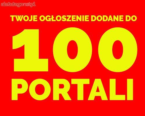 DODAJ 100 OGŁOSZEŃ, OFERTA DODAWANIA OGŁOSZEŃ