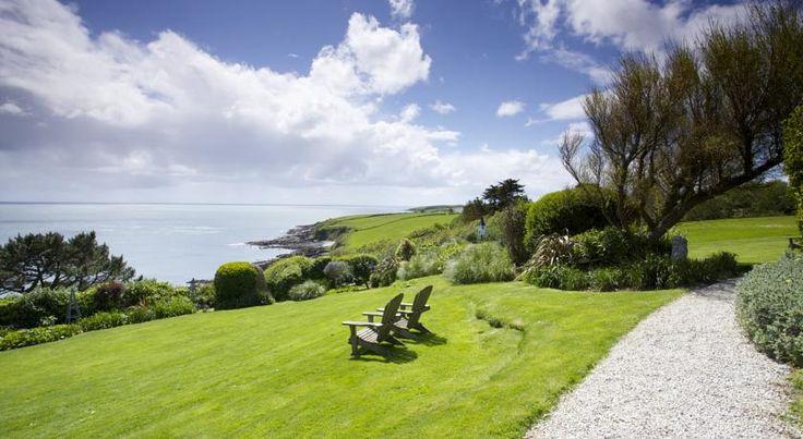 Driftwood Hotel Review,  rose vine  Portscatho    Cornwall   Travel