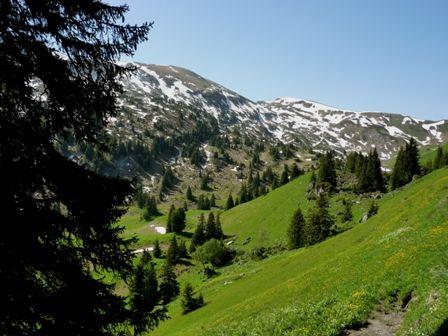 Seebergsee / Diemtigtal Schweiz  http://webseiten-seo.ch