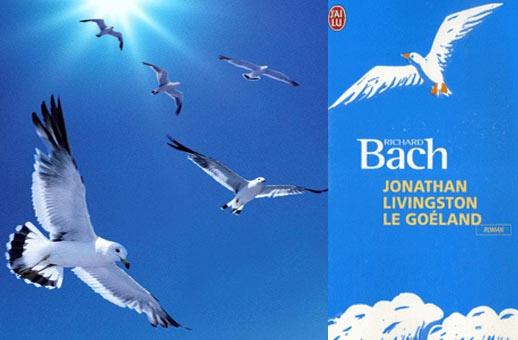 Jonathan Livingston - Free as a bird...