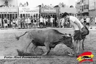 torodigital: Buena tarde de vacas de Juan Faet en Moncofa