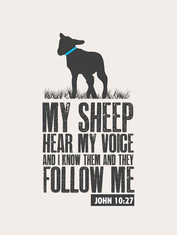 Quote for bulletin board w/ sheep.  John 10:27