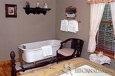 Le bain  sur patte dans Vaisseau d'or