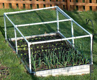 PVC Fence - The new veggie gardensRabbit, Gardens Ideas, Industrial Groundhog, Pvc Fence, Deer Proof, Outdoor Gardens, Veggies Gardens, Gardens Outdoor, Animal Fence