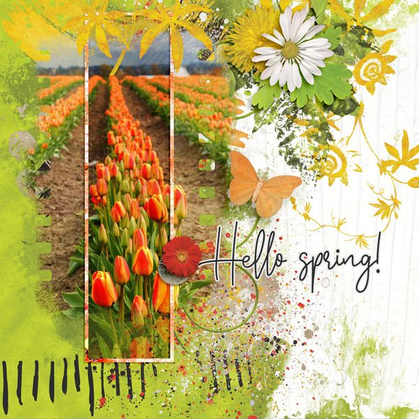 Spring Sentiments - Created by Jill https://pickleberrypop.com/shop/product.php?productid=64347 Photo: Pixabay