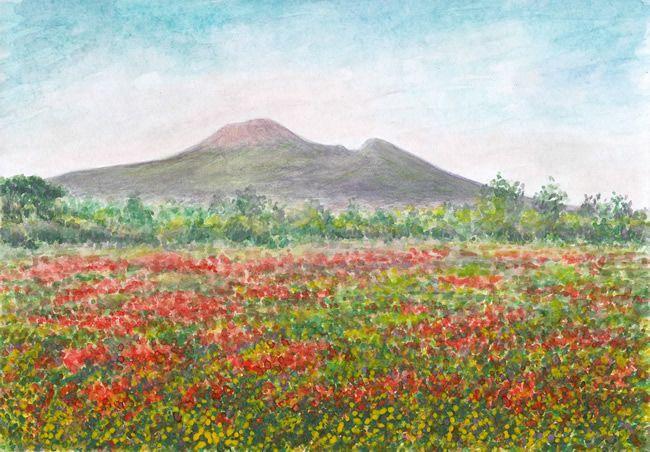 Papaver rhoeas and Vesuvius, watercolor by Jana Haasová