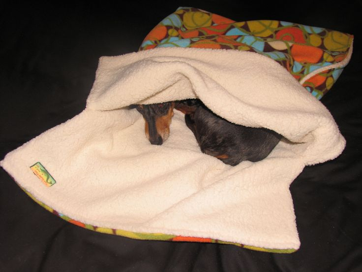 Burrow Bag, Dog Sleeping Bag, Snuggle Sack, Dog Blanket, Dog Bed. $32.00, via Etsy. - Gia seriously needs one of these.