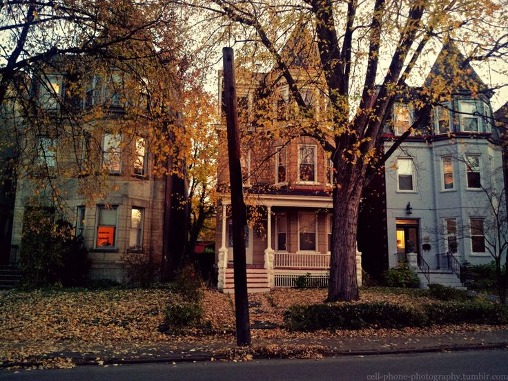 cell-phone-photography:  Fall in North Oakland by Melanie Stangl: cell-phone-photography:  Fall in North Oakland by Melanie Stangl