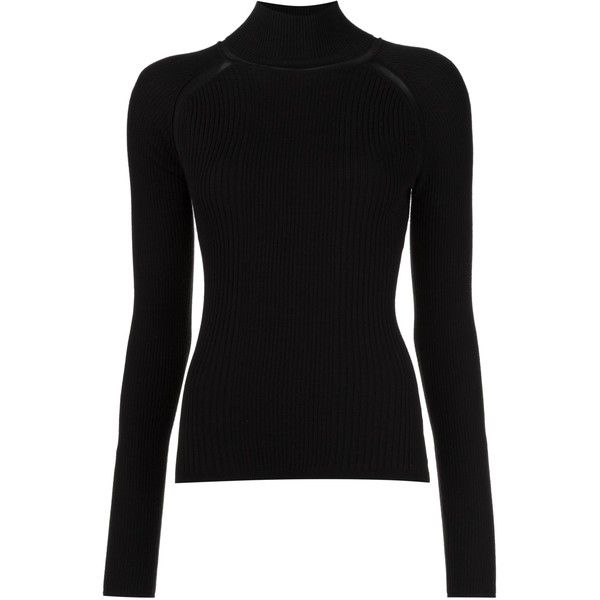 Beatrice Turtleneck ($195) ❤ liked on Polyvore featuring tops, sweaters, rib top, ribbed turtleneck sweater, ribbed turtleneck, ribbed turtleneck top and ribbed top