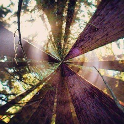 Hoe is jouw blik vandaag? www.stilte-inspireert.nl