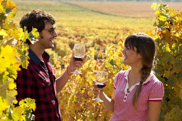 Degustar um bom vinho nas charmosas regiões vinículas de Conchagua no Chile! #Santiago #Chile #Travel