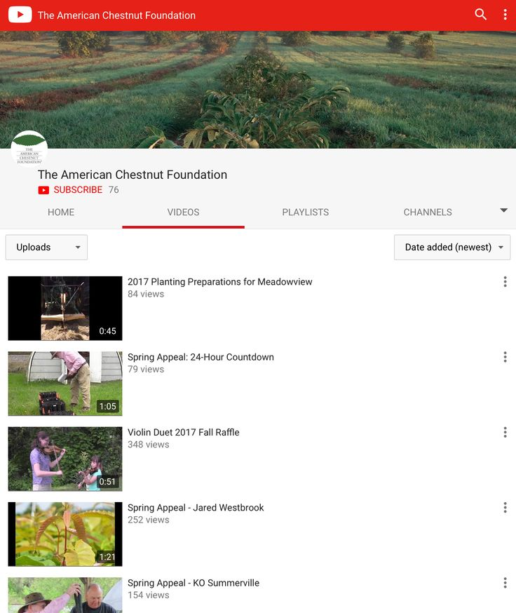 The American Chestnut Foundation's YouTube channel