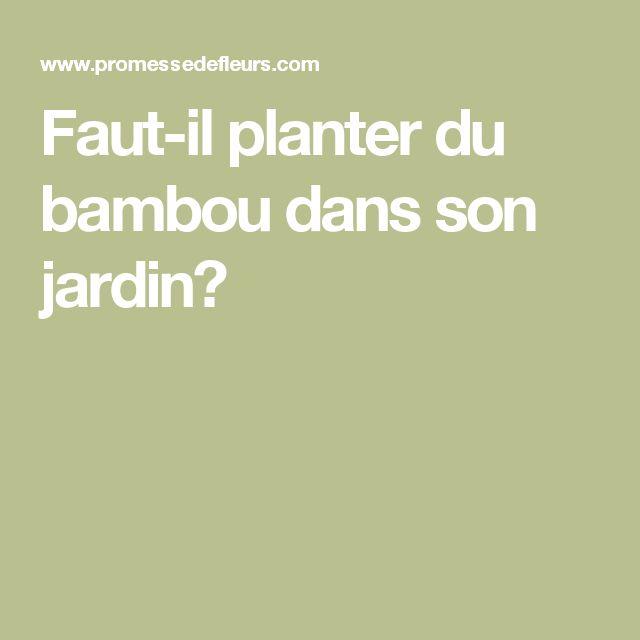 les 25 meilleures id es de la cat gorie jardins potagers On planter du bambou dans son jardin