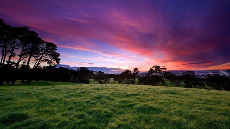 nature top screen backgrounds sites