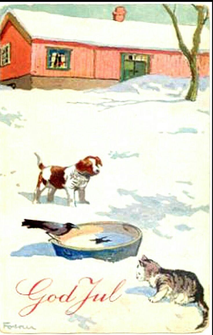 Julekort Sign. FOSNER (?) Hund, katt og skjære ved frossen vannskål Utg Brødr. Halvorsen A/S  Brukt 1930