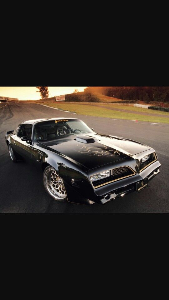 Year one smokey and the bandit Trans am