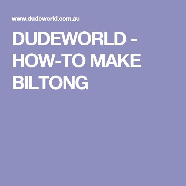 DUDEWORLD - HOW-TO MAKE BILTONG