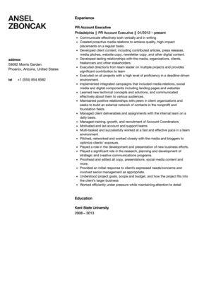 Public Relations Account Executive Resume Sample
