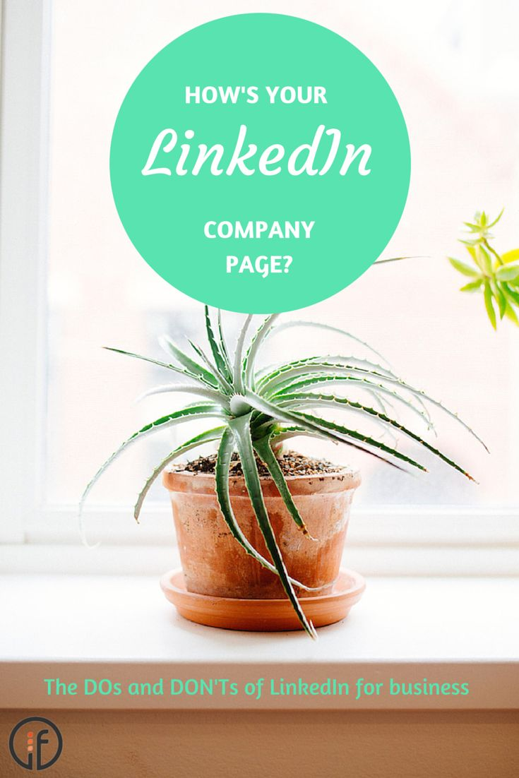 Are you effectively managing your business' LinkedIn Company Page? Are there some things you're doing that perhaps you should leave for Facebook? How can you make the most of LinkedIn for business and grow your profile? Find out here.