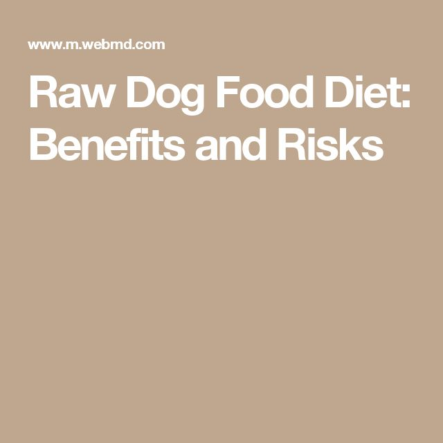 Raw Dog Food Diet: Benefits and Risks