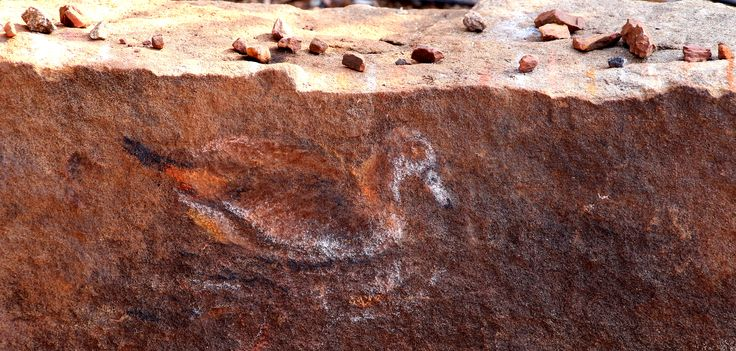 Anni Snyman's duck drawn with the stones above.