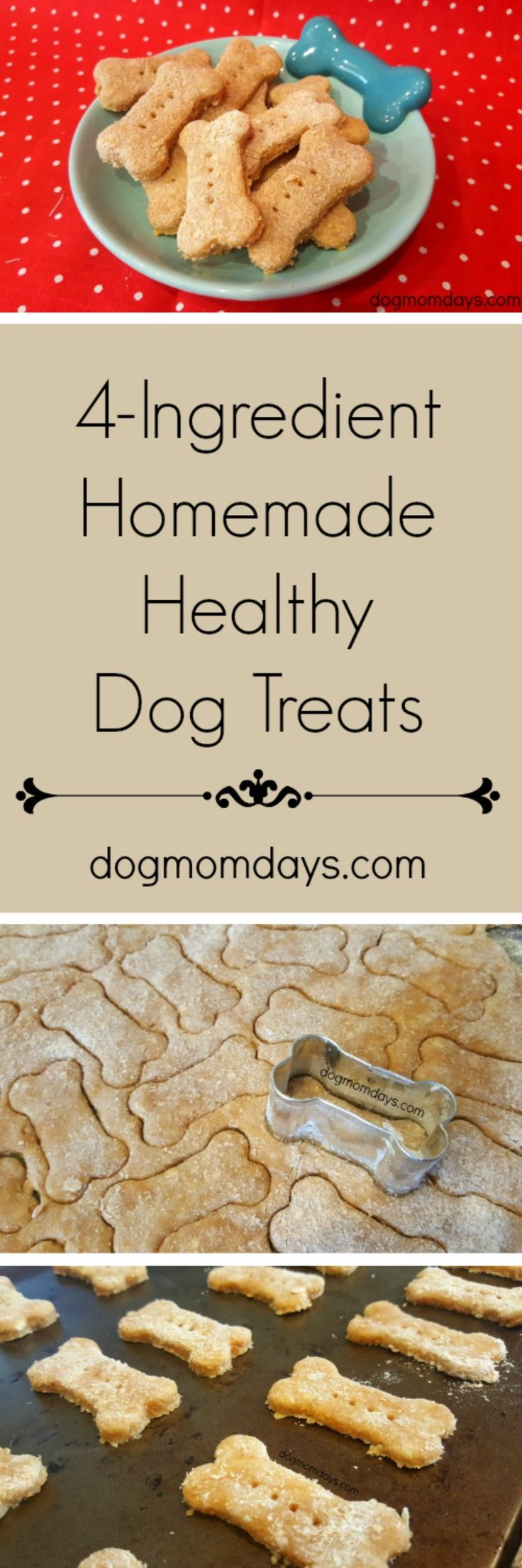 This 4-ingredient recipe for healthy homemade dog treats is super simple and delicious! The ingredients are one that you probably already have at home! Check out the full recipe and other great DIY dog treat recipes on my blog!  Homemade Dog Treats | Limited Ingredient Dog Treats | DIY Dog Treats | Easy Dog Treats