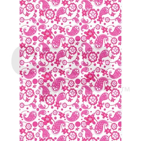 Hot Pink White Paisley Pattern 5 X7 Area Rug Pink