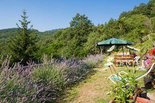 Il giardino B&B La Colombella