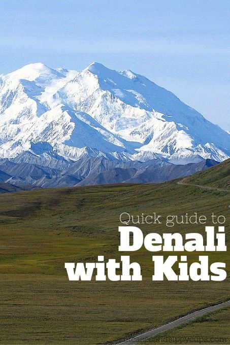 Tips for Visiting Denali with Kids - Suitcases and Sippy Cups