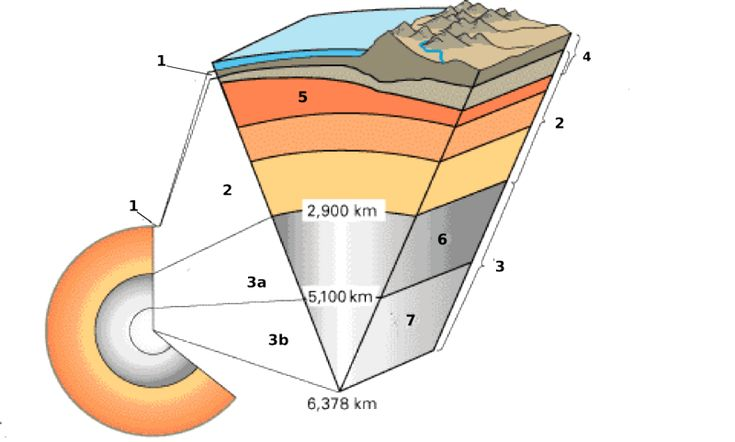 A cross section of Earth showing the following layers: (1) crust (2) mantle (3a) outer core (3b) inner core (4) lithosphere (5) asthenosphere (6) outer core (7) inner core.