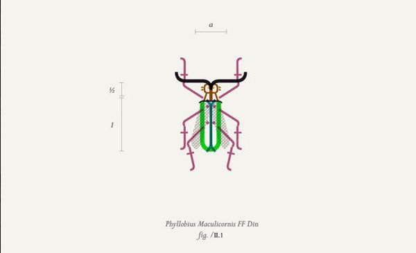 A Gorgeous Collection Of Insect Illustrations Made Out Of Type - DesignTAXI.com
