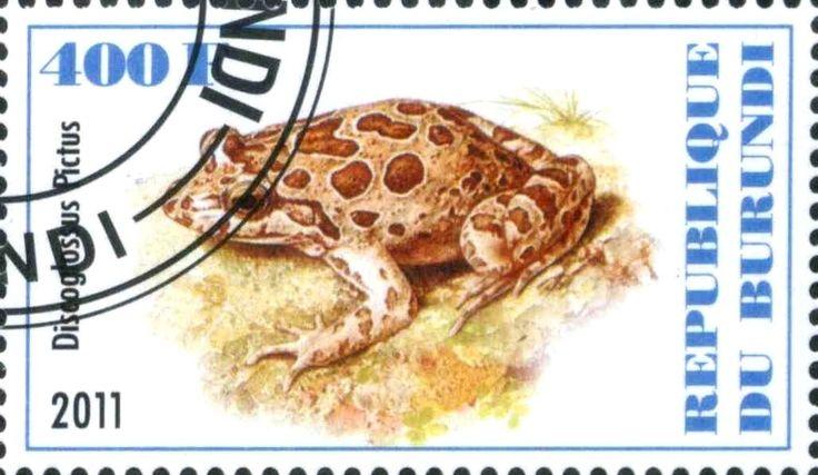 Stamp: Discoglossus Pictus (Cinderellas) (Burundi) Col:BI 2011-36/4