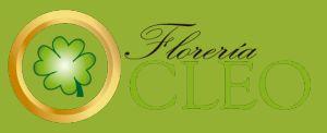 Florería Cleo | Catálogo