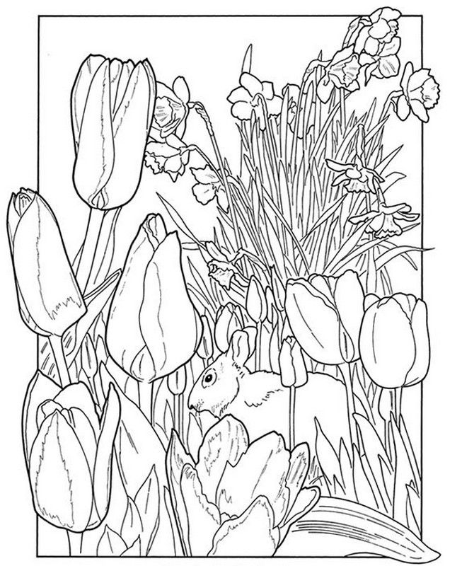 Welcome To Dover PublicationsThe Flower Garden Coloring Book