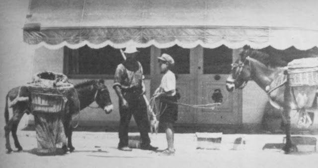 OĞUZ TOPOĞLU : midilli adası 1975 hayat dergisi
