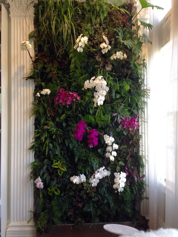 This elegant vertical garden resides in a luxury apartment in the upper west side of Manhattan. It features an array of tropical green plants and beautifully colored orchids.