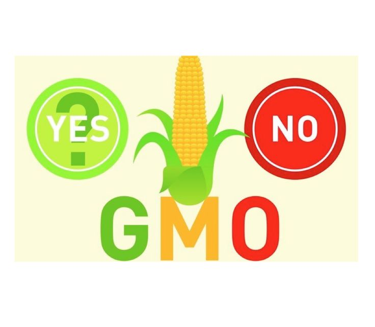 The 2015 #GMO debate evolution: Did Science overcome challenges from the 'Dark' voices of #antibiotech, #antiGMO hysteria, propaganda? What role did #moms play in the changing face of the debate? How did some of the first adapters of #nonGMO movement fair? What's in store for the new year?