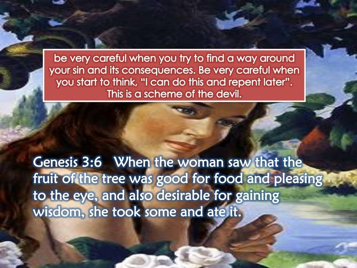 Genesis 3:1-13 – The Bible Teaching Commentary