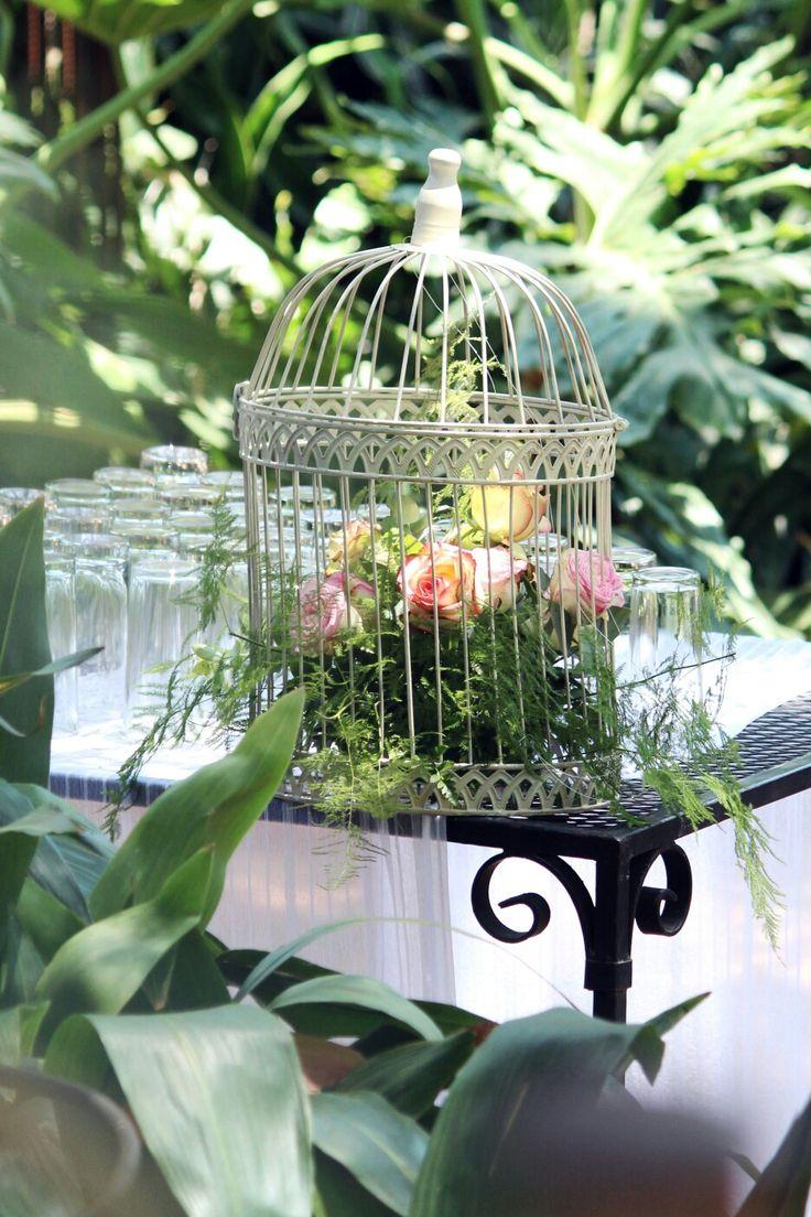20 February 2016 - Pieter & Izel Hattingh - Bird cage bouquet