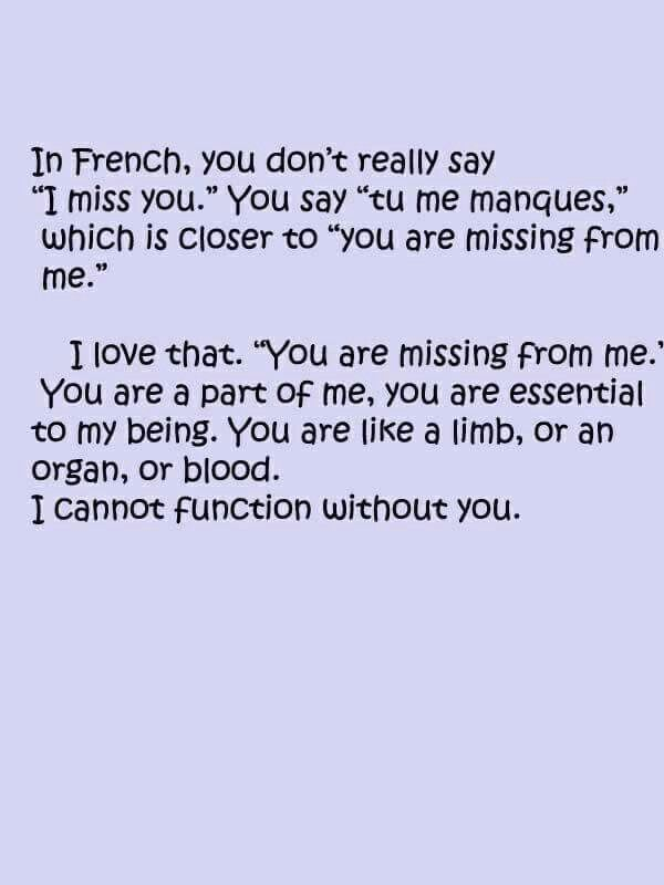anglo french relationship quotes